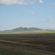 Erste Schritte in der Mongolei