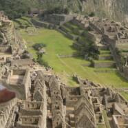 Die Pairing-Gurke in Peru