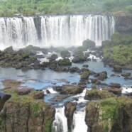 Die Pairing-Gurke in Brasilien